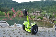 green segway z1-d plus