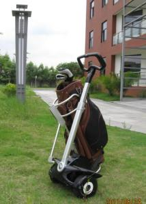 robin and golf cart